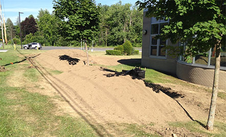 piles of dirt on lawn